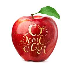 Логотип «яблочной» свадьбы..