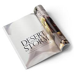Ретушь фотосессии «Desert Storm»..