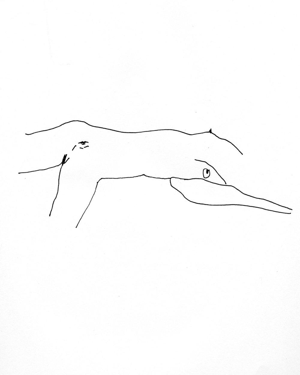 drawings628.jpg