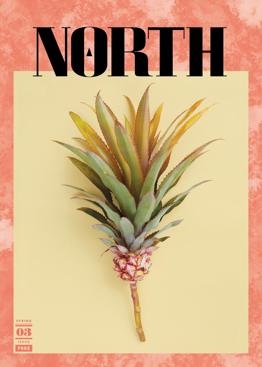 northi03p0.jpg