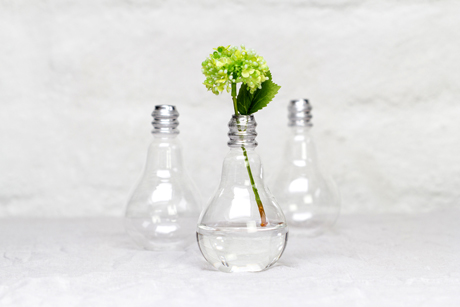 The Perching Post Light Bulb Vase