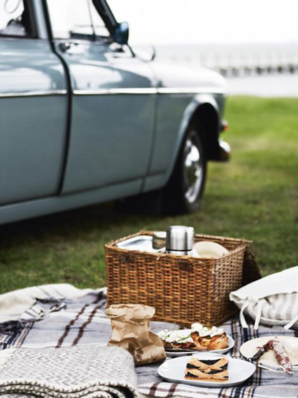 Car Journey Picnic