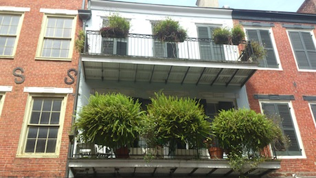 Balconies in French Quarter, NOLA