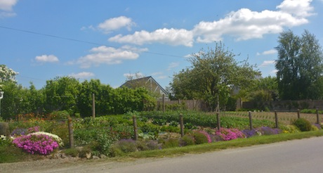 My favourite potager garden in Plancoët, Brittany, France