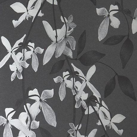 Jocelyn-Warner-Wallpaper-Cascade-Ivory Black
