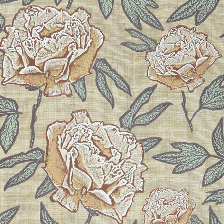 Jocelyn-Warner-Wallpaper-Dandy- Apricot-Blush