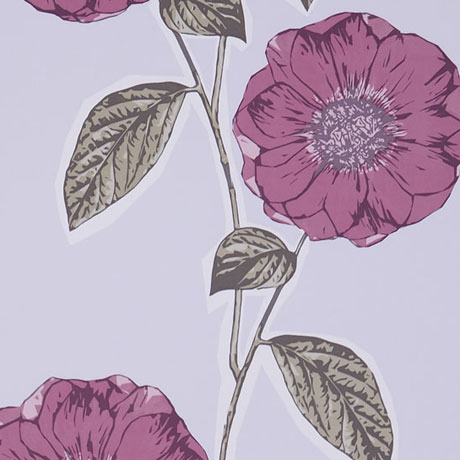 Jocelyn-Warner-Wallpaper-Poppy-Viola