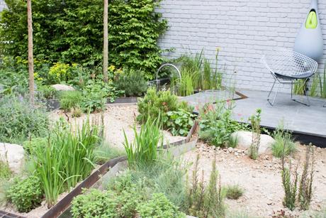 RHS-Chelsea-Flower-Show-2012-Climate-Calm-Garden-Flowerona