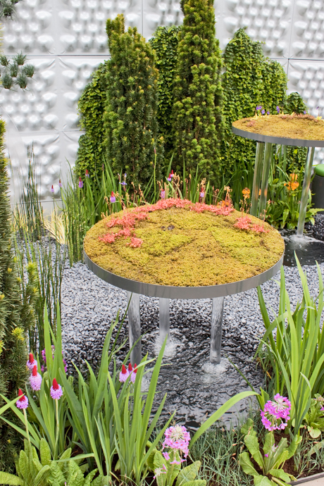 RHS-Chelsea-Flower-Show-2012-The-Soft-Machine-Flowerona
