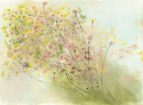 Sue Fenlon Spring shower