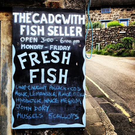 cadgwith-fish-seller
