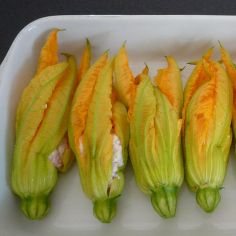 courgette-flower