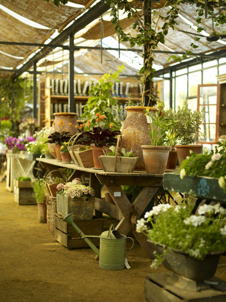 Petersham Nurseries David Loftus