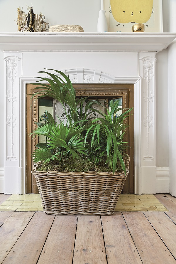 The texture of this basket complements the plants growing inside.