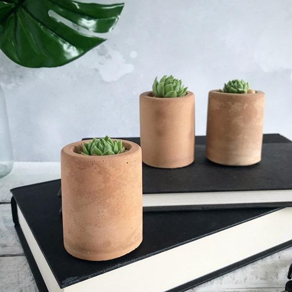 Concrete Succulent Planter Trio, £19.99
