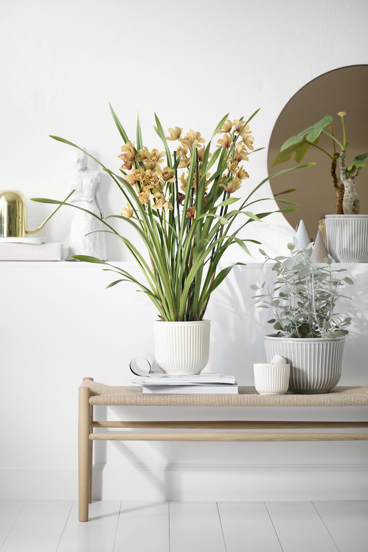Kahler Design_Hammershõi flowerpots 11a_from £19.90.jpg
