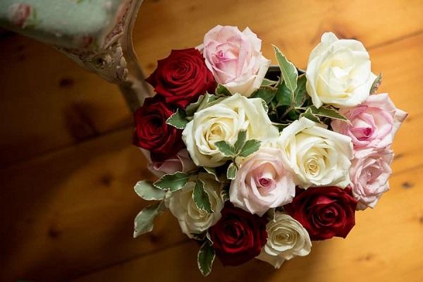 Bloom Magic Flowers [3].jpg