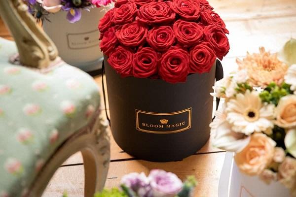 Bloom Magic Flowers [8].jpg