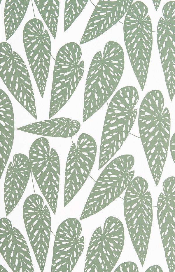 MISP1290-TROPICS-Foliage.jpg