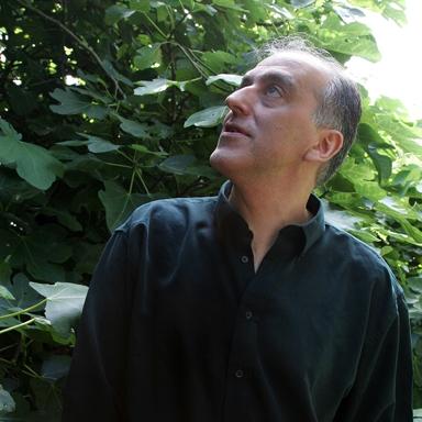Mario Petrucci, London