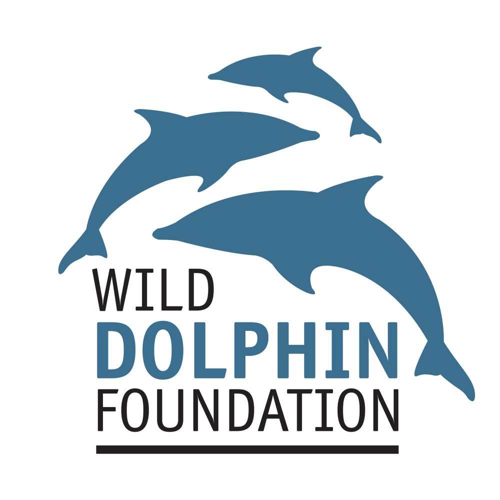 Wild Dolphin Foundation, Hawaii