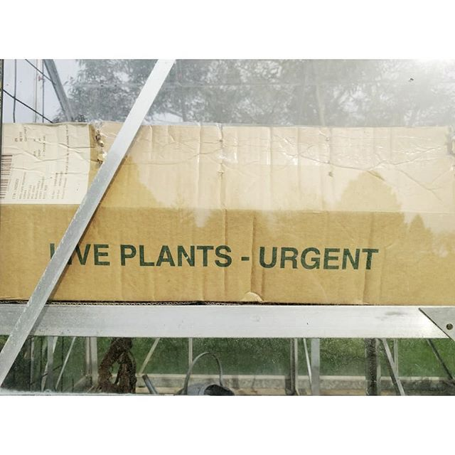 Don't send nudes. Send plants. Urgent.