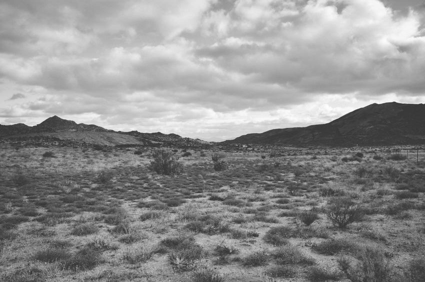 Springbok YeahYeah Photography Northern Cape