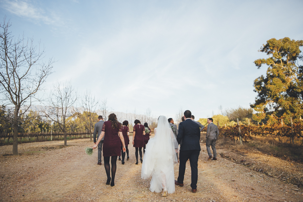 Wedding Yeahyeah Photography Andrew Mariska Cape Town Tulbagh Mo