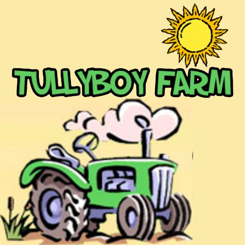 Tullyboy-Farm
