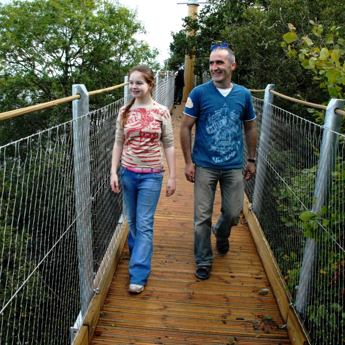 The-Lough-Key-Experience-and-Tree-Canopy-Walk
