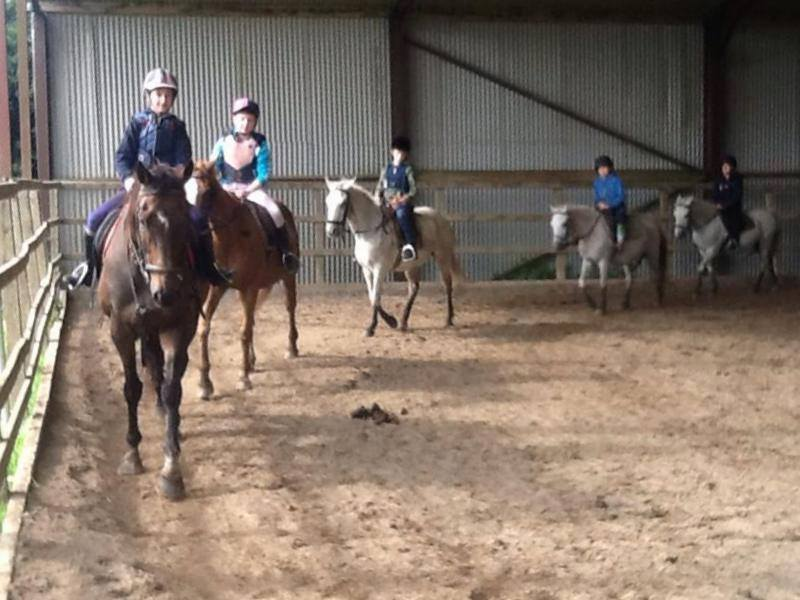 horse riding 3.jpg