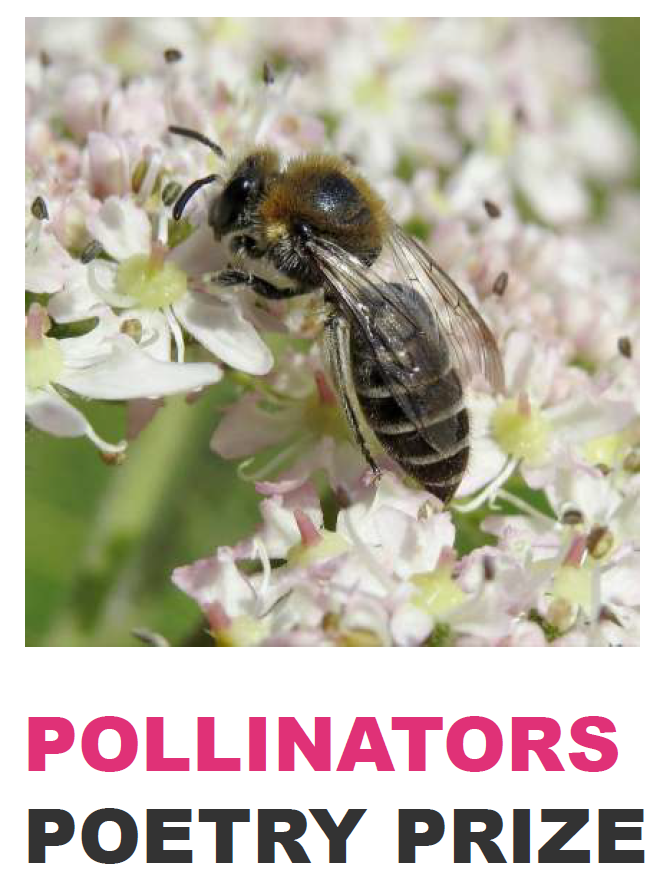 Pollinators Poetry Prizes.PNG