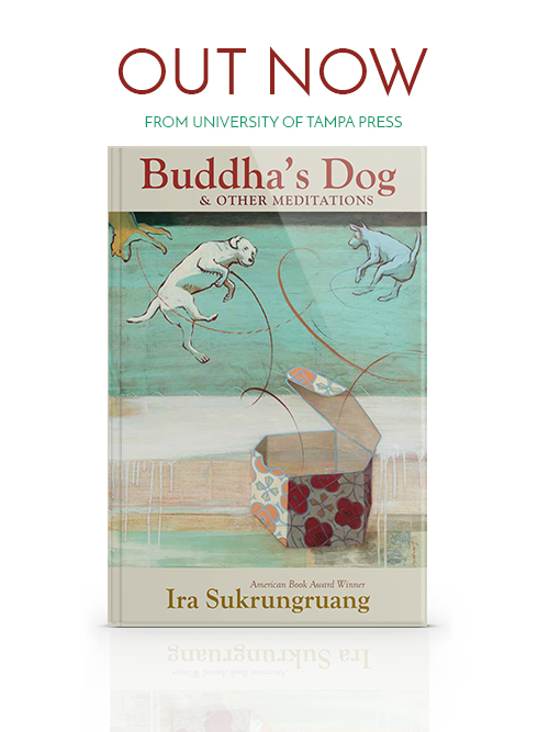 Buddhasdog cover reflection2.jpg