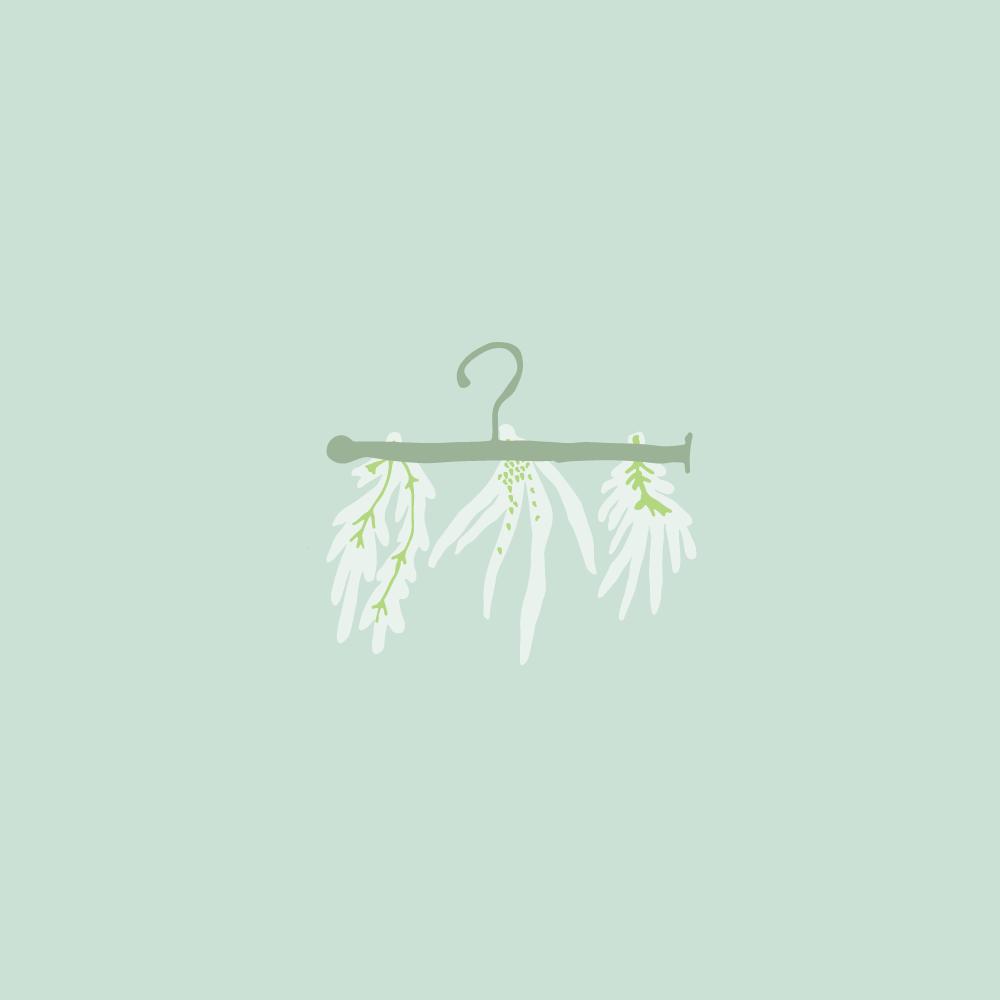 lettucedreams_1.2.png