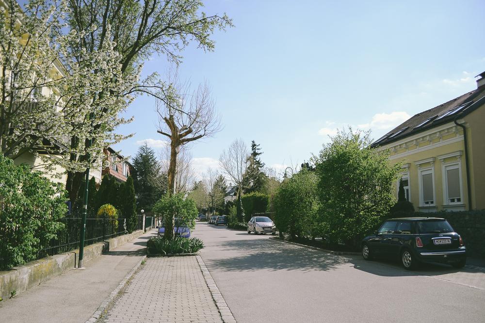 vienna-73.jpg
