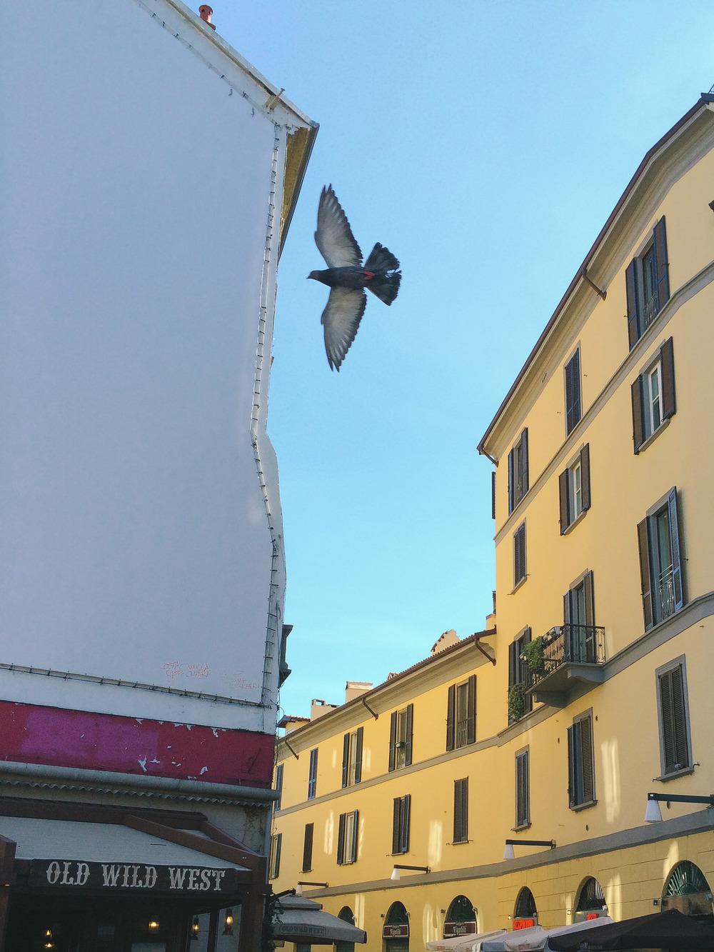 Milan-30.jpg