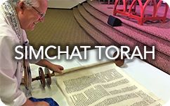 simchat-torah-4-rounded.png