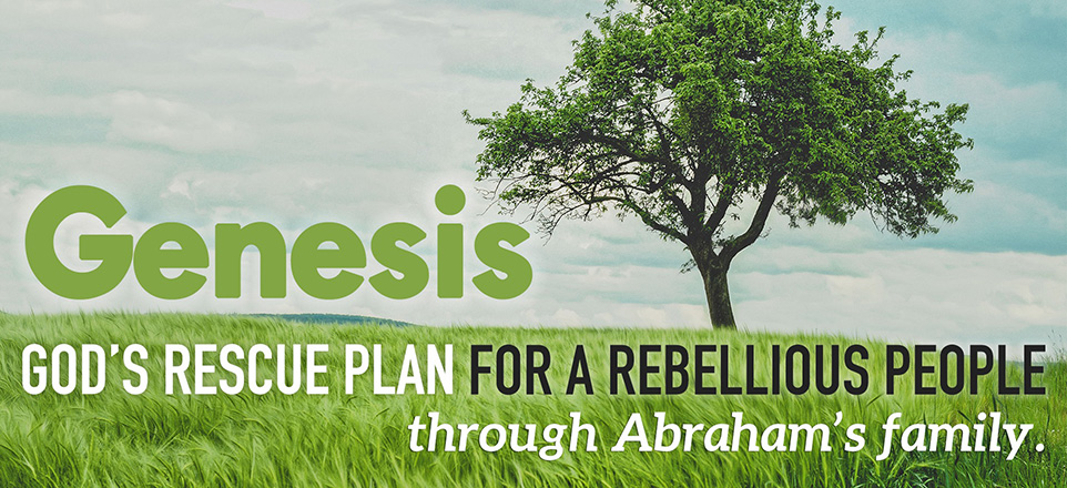 Genesis-Series_Website-Banner-962x440.jpg