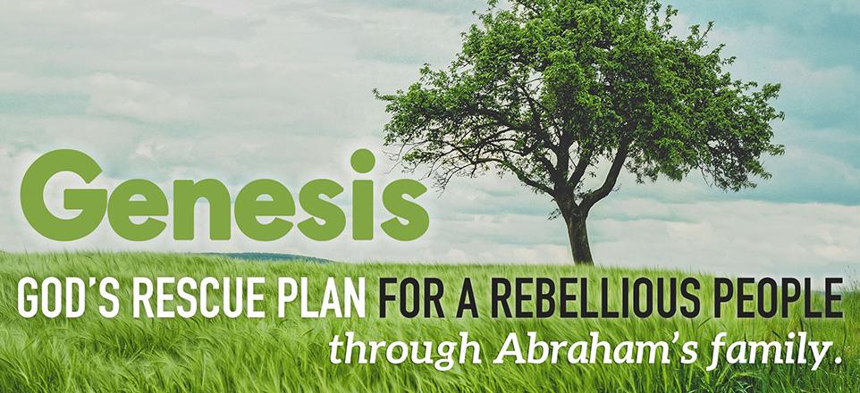 Genesis-Series_Website-Banner-962x440.jpg