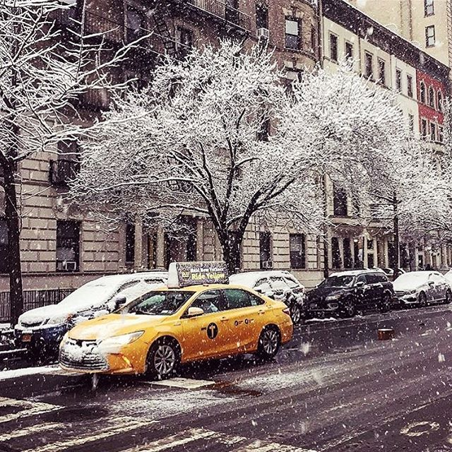 Happy snowy Friday #nyc