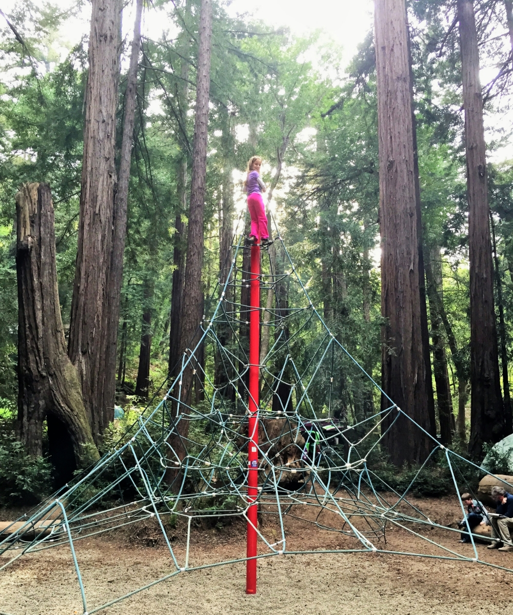 Rien Rose, Queen of the Redwoods