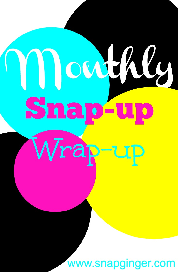 Monthly Snap-up Wrap-up - July - SnapGinger Blog