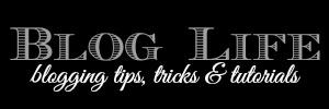 Blog Life SnapGinger