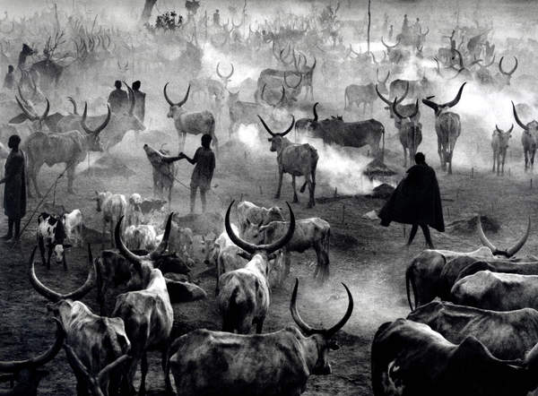 Photo: Sebastião Salgado