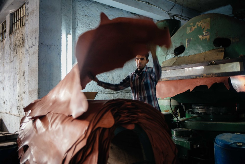 A tannery worker takes a newly pressed hide out of a machine.