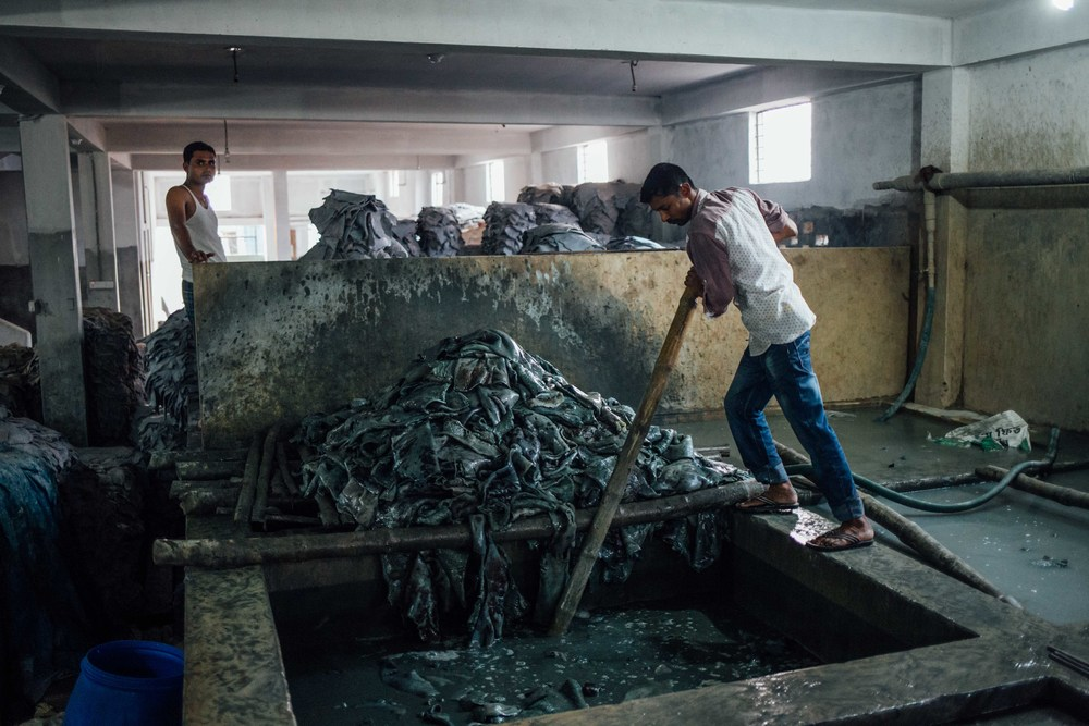 "Following the ""wet blue"" process where the hides are bleached, workers manually stir piles of hides in pits filled with bleaching agents to soften them and prepare for drying."