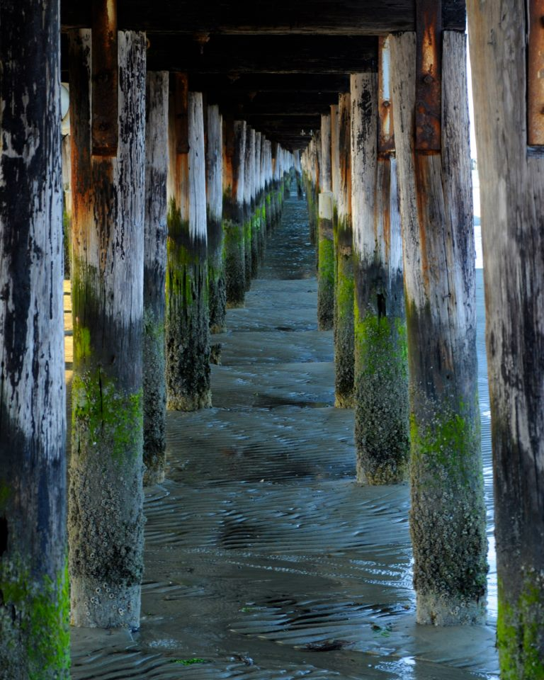"""Under the Dock""    Honorable Mention Landscape, 9-12   Julia Keane"
