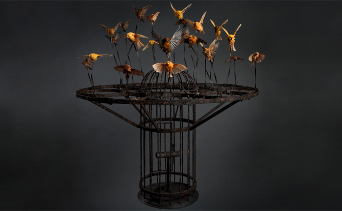Photo Credit: Polly Morgan, Systemic Inflammation, 2010; Taxidermy and steel; Photography by Tessa Angus