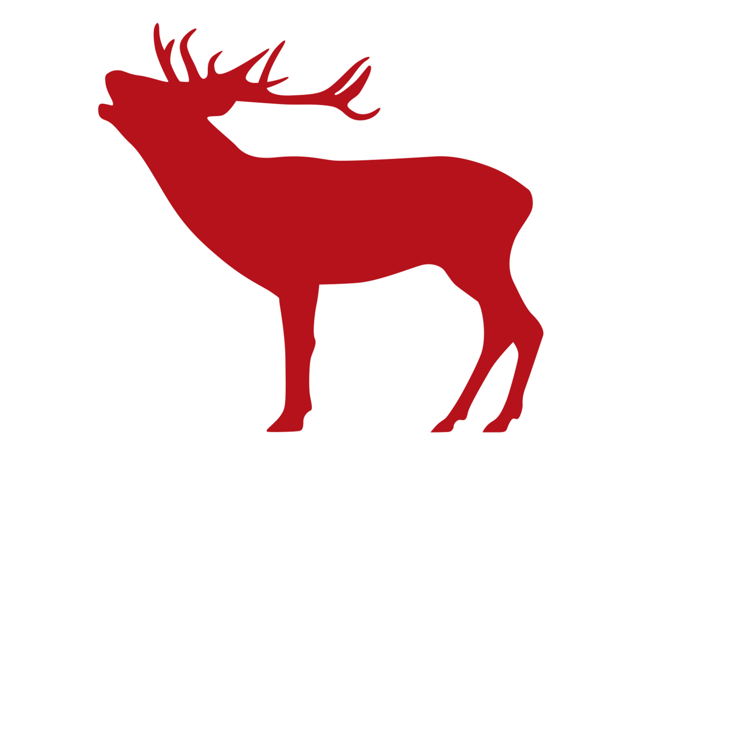 Crafted Ireland - Custom Tours