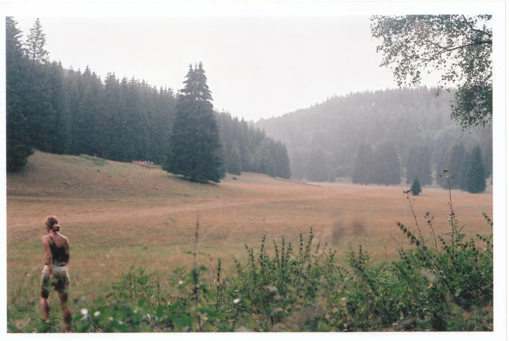 Woodlands Thunderstorm